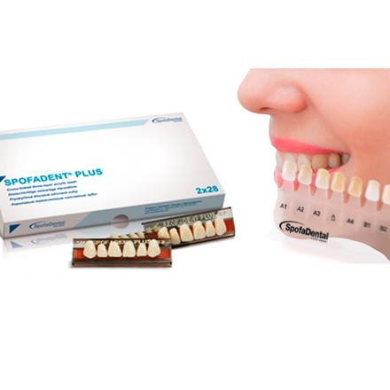 Розпродаж !!! Зуби акрилові Spofadent Рlus D2